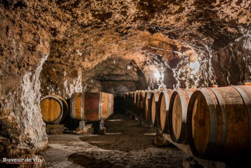 sylvain dittiere-cave-domaine porte saint jean, vigneron montreuil-bellay en appellation saumur champigny